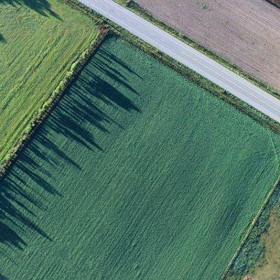 קרקעות להשקעה – לבחור את הקרקע הנכונה לפרויקט שלכם